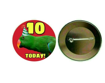 Green Eclectus Parrot (Male) - Today Is My Birthday Red 55mm Button Pin Badge (PG-0857)