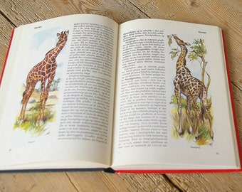 Vintage book animals. All the world's mammals.Vintage book color illustrations.Whales bears monkeys giraffes elephants.Nursery decor Collage
