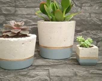 Denim Collection/planters with succulents