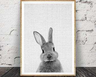 Rabbit Print, Woodlands Nursery Art, Rabbit Wall Decor, Black and White Baby Animal Print, ...