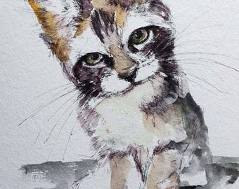 Kitten cat Watercolor cats  painting