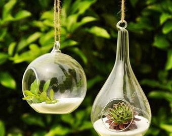 Hydroponic Hanging Vase