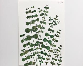 Eucalyptus Original Watercolour A5