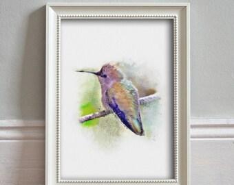 Hummingbird Print Watercolor Illustration Wildlife Print Wall Art Kitchen Decor Wildlife Poster - ART PRINT