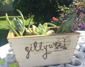 Harry Potter Planter featuring Gillyweed