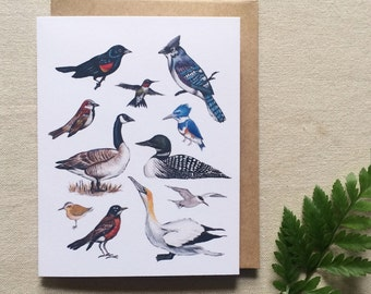 'Birds of North America' greeting card