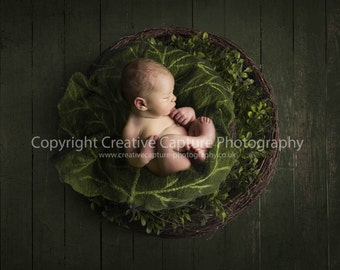 Newborn Digital backdrop / background / rustic wood floor / newborn prop nest / Felted leaf
