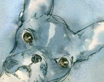 French Bull Dog portrait Original Watercolor Painting