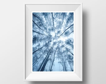 Aquarelle Painting, FINE ART PRINT, Forest, Nature, Blue