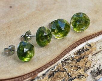 Faceted Moss Stud Earrings, Terrarium Earrings, Real Moss Earrings, Green Moss Earrings, Gift for Her, Terrarium Jewelry, Woodland Jewelry