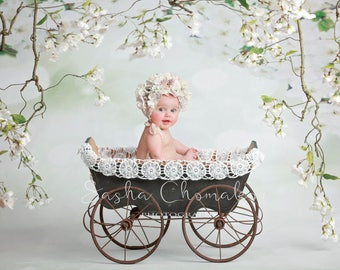 digital backdrop  background newborn baby girl sitter white blossoms  flowers sitter toddler vintage stroller cart