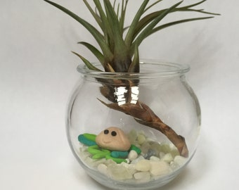 Build Your Own Terrarium Kit with Totem