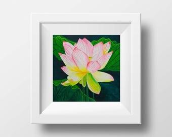 Pink Lotus Flower - Original Painting