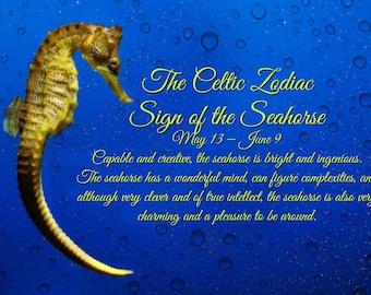 Celtic Zodiac Sign of the Seahorse Traditional Gemini Birthday Card, Alternative Zodiac Fun Birthday