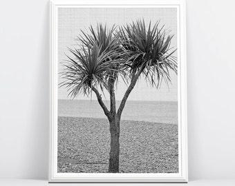 Beach Art, Beach Decor, Beach Photo, Palm Tree, Coastal Decor, Coastal Wall Art, Printable Large Poster, Digital Download, Black and White