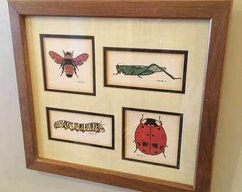 Vintage gene gray print bug print bug picture decor framed art bumble bee ladybug caterpillar grasshopper matted insects retro science wall