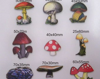MUSHROMS BRIGHT And C!OLOURFULL  9 x in a pack