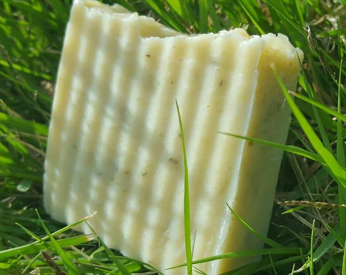 European Clay Face Soap Bar | Natural | Vegan | Fragrance Free | Full Size | Sample Size