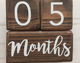 Monthly Baby Blocks