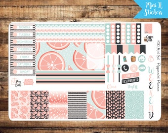 Mini H Grapefruit Weekly Planner Stickers {#50}