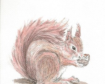 Red Squirrel Notecards