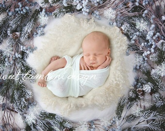 Christmas Digital Backdrop for Newborn Photography - Frosted Nest