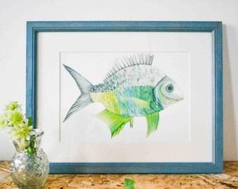 A4 Fish green blue (artprint)