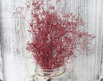 Dark rose shade Real Dried Baby breath Small Bunch,Dried Gypsophila Supplies