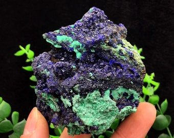 Incredible!!! Bright Blue Azurite & Green Malachite Mineral Specimen, Healing Crystals and Minerals , Ore collectible 179