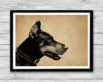 Doberman print, Doberman illustration, Doberman Wall Art, Dog Art Print, Doberman Dog Decor, Antique Decoration Hand Drawn Doberman DIA28