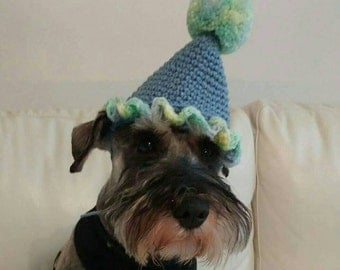 Dog Party Hat, Dog Birthday Hat, Cat Birthday Hat, Photo Prop, Clown Hat, Cat Hat, Dog Hat, Hand Crocheted, Puppy Party Hat, Dog Costume,