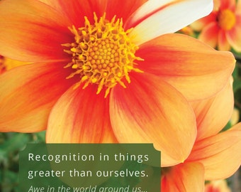 Inspiration / Motivation: Life is Beautiful in Spite of Imperfection