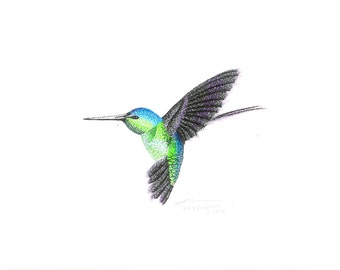Print of Hummingbird One