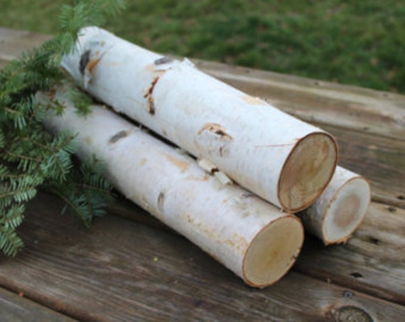 18 White Birch Fireplace Logs Bundle Of 3
