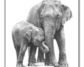 elephant fine art print open edition elephants picture wildlife jumbo wall hanging animal prints graphite drawing black and white sketch