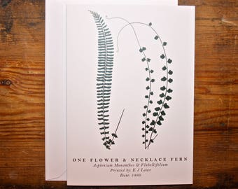 One Flower & Necklace Fern: Greeting Card