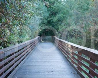 Green Bridge Digital Backdrop
