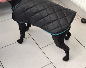 HANDMADE waterproof padded dog coat