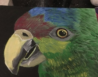 Acrylic Painting of a Parrot
