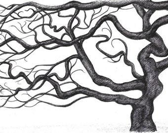 Pen Drawing Bare Tree in Black White on White Paper with Black Ink on A4 Paper Size, Interior Gift for Home
