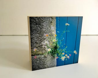 Little friends-bamboo photo block-Brittany-door-blue-flower