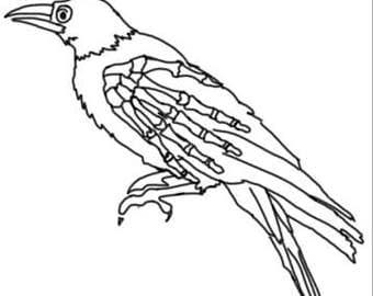 Skeleton crow sticker