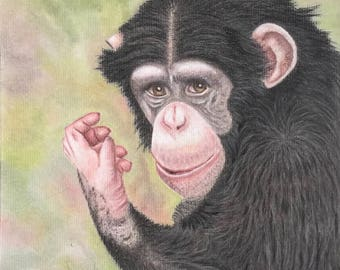 A Beautiful, Original, Pastel Pencil Painting of a Chimpanzee
