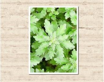Green Leaves Watercolour Painting Postcard Poster Art Print Q50