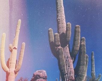 Original Desert Photograph