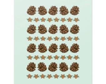 Pine cones & ginger man