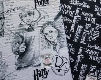 Harry Potter book sleeve papa