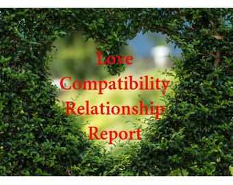 Lovers Compatibility Report : Scores and Interpretation