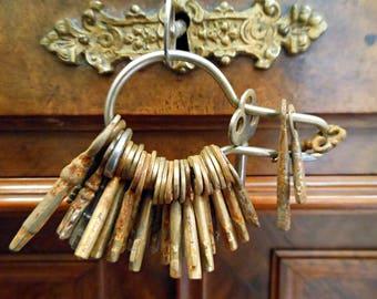 Antique Keys - Skeleton Key Ring - Master Key Ring