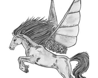 Ltd Edition - A4 & A3 Canvas Print - Original Artwork - Winged Horse